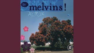Provided to YouTube by Pias UK Limited Cray Fish · Melvins 26 Songs...