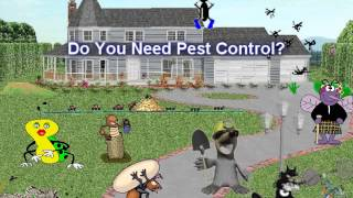 Livonia Michigan Pest Control And Wildlife Management Pest-Ez