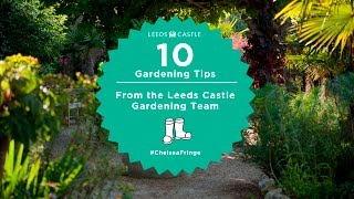 Top 10 Gardening Tips from the Leeds Castle Gardeners