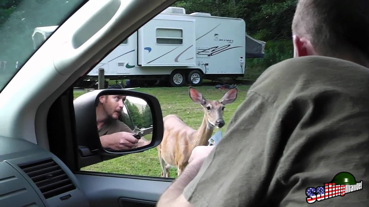 Wv deer hunting fail youtube for Wv fishing license online