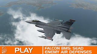 Falcon BMS Mission 4: SEAD
