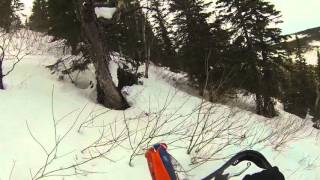 Steep Tree line on ktm 300xc short track in the Chic-Choc, Quebec, Canada