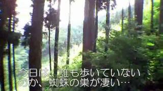高水三山への道程4/4惣岳山@東京都青梅市