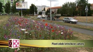 Plzeň v kostce (20.7.-26.7.2015)