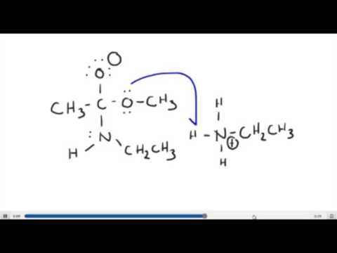 Ester to Amide Mechanism Source