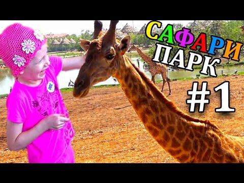 ОГРОМНЫЙ САФАРИ ПАРК для детей #1 Кормим и гладим Жирафа Шоу Обезьян Зоопарк для детей в Бангкоке