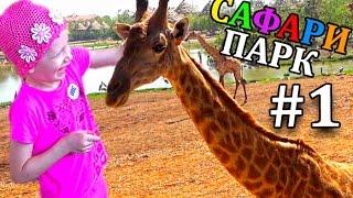 Сафари парк для всей семьи #1 Кормим и гладим Жирафа Шоу Обезьян Зоопарк в Бангкоке