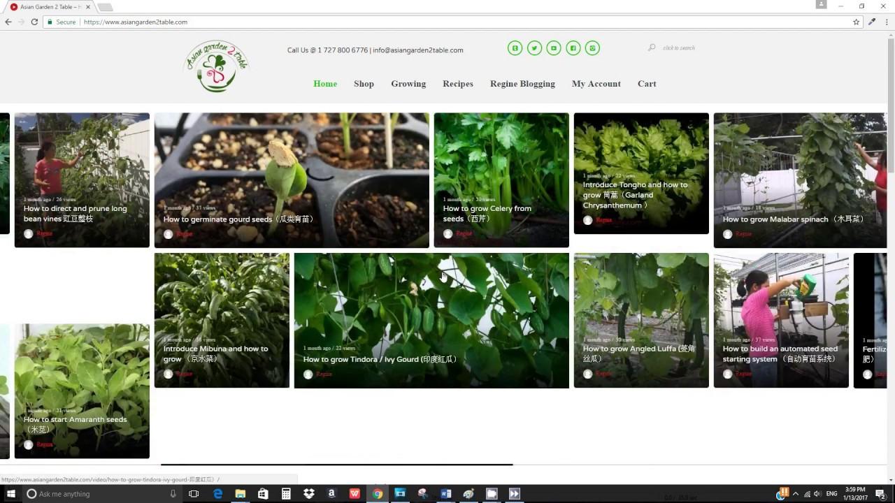 Easy Guide To Our Website Asiangarden2table Com Asian Garden 2 Table