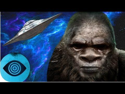 Ist Bigfoot ein Alien?