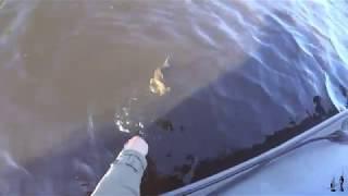 Рыбалка на щуку Озеро Вуокса