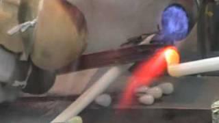 Majorica - Formación del núcleo de la perla (Paso 1)