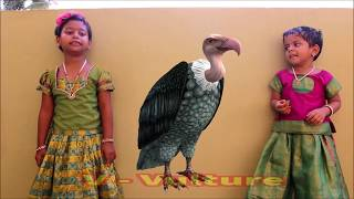 Learn Birds Name for Kids 3D Effects | Alphabets A to Z Birds with Images