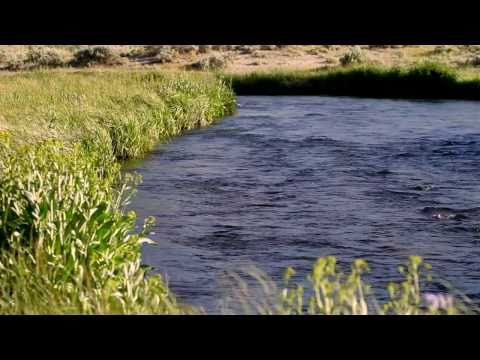 Hot Creek Fly Fishing Ranch - Leland Fly Fishing Outfitters