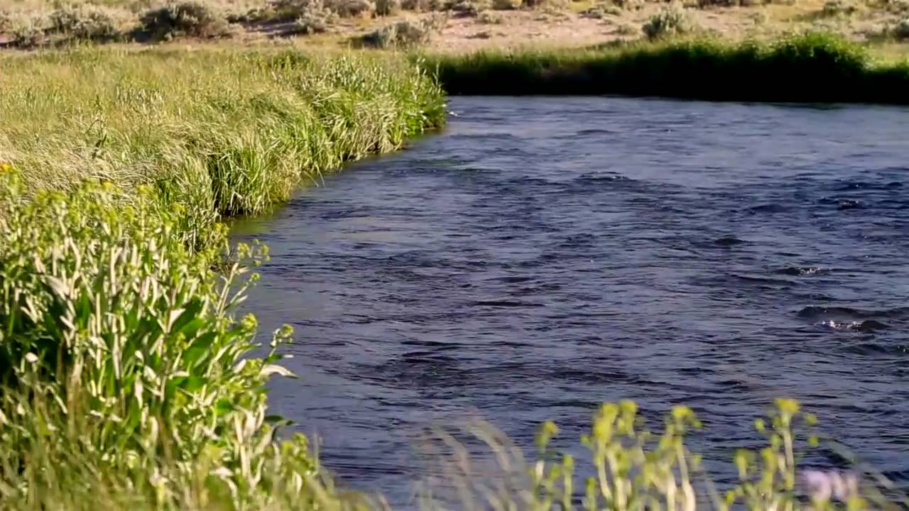 Hot creek fly fishing ranch leland fly fishing for Leland fly fishing