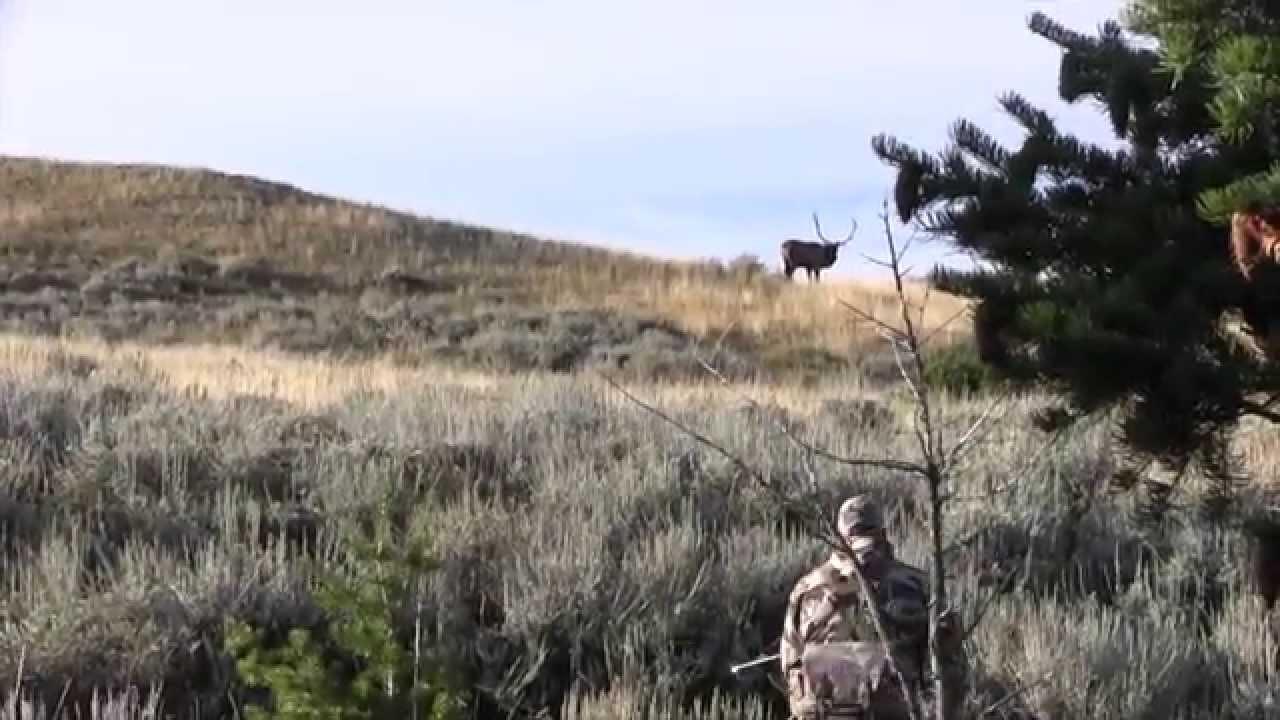 Montana Elk Hunting Mean Season Vol 3 Episode 2 Youtube