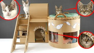 🐈🏠How to make Amazing Kitten Cat Pet House from Cardboard