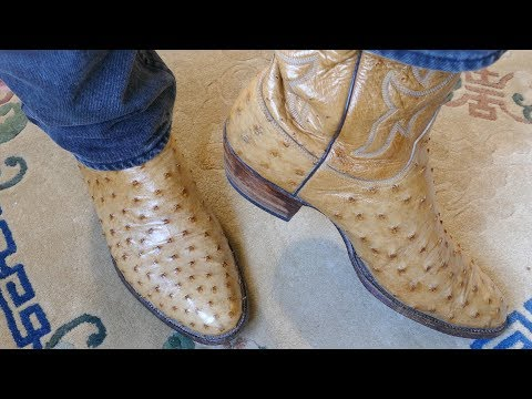 LUCCHESE CLASSICS Full Ostrich Vamps in 4k UHD