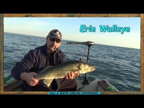 Walleye Jigging Buffalo New York