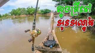 ស្ទូចត្រីនៅអូរអណ្តូង   Fishing Vlog S3 #09