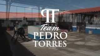 Lusitanos Market & Team Pedro Torres Training with Lusitano Horses