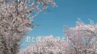 KAB. - 桜並木
