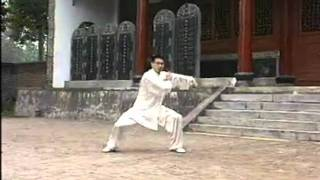 Real Chen Tai Chi Cannon Fist by Chen Bing