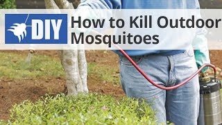 How to Get Rid of & Kill Mosquitoes in the Yard