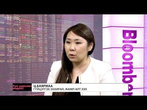 Ц.Баярмаа: Алтны компаниудад тулгарах асуудал жилээс жилд нэмэгдэж байна