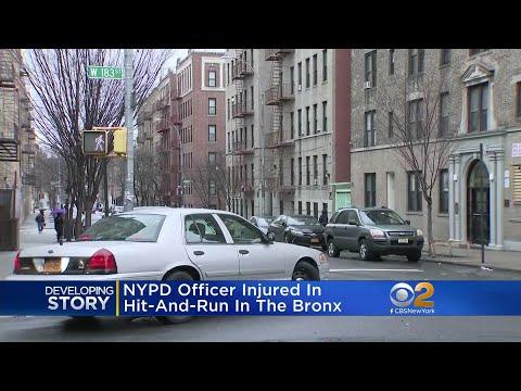 CBS2 News Update: Feb. 22 at 2 p.m.