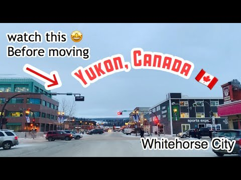 Yukon, Canada | Must Know This Before Going To Yukon + Driving Around Whitehorse City In Winter Time