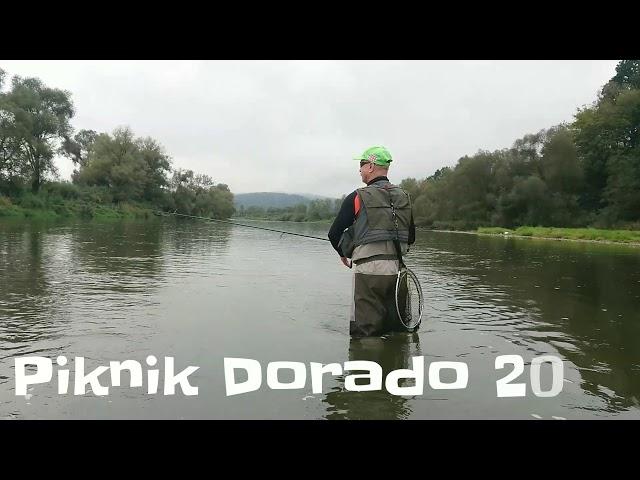 Piknik Dorado 2018