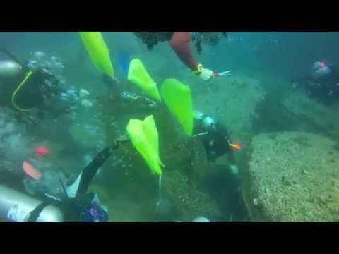 Clean Up Our Sea @ Chumphon ,Koh Tao by Save The Planet Associate (SPA) & Muang Thai Life Assurance