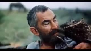 Мудрые кавказские слова из фильма