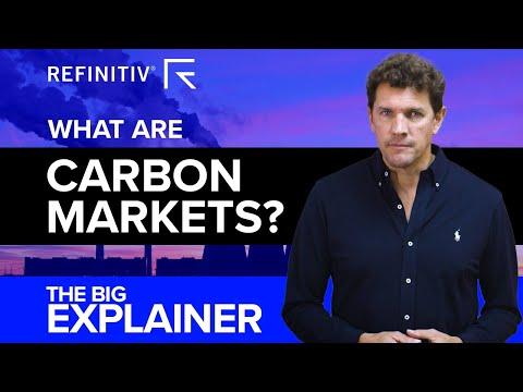 Carbon Markets | The Big Explainer | Refinitiv