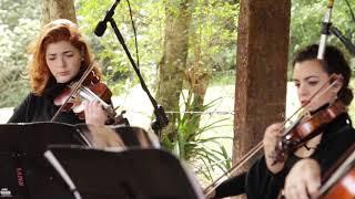 Baixar Trem Bala Ana Vilela (Instrumental) Música para Casamento