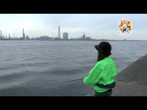 Япония. Где японцы ловят рыбу