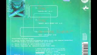 Silent Phase - Meditive Fusion (Kenny Larkin Mix)