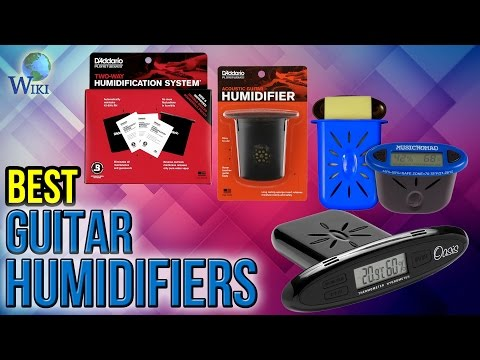10 Best Guitar Humidifiers 2017
