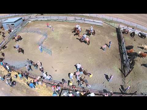 Starzman Ranch - Livestock Branding Part 2