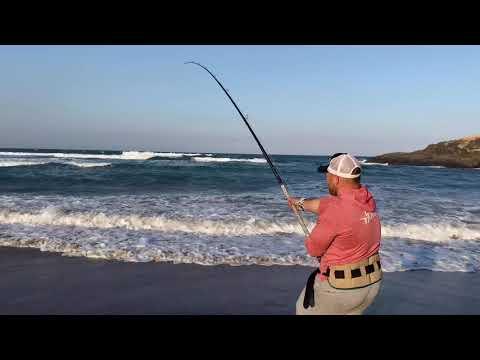 Port St. John's Shark Fishing With Ex Shark Hooker Kyle Cooper- July 2020