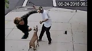 Dog lover knocks out a dog abuser!!!