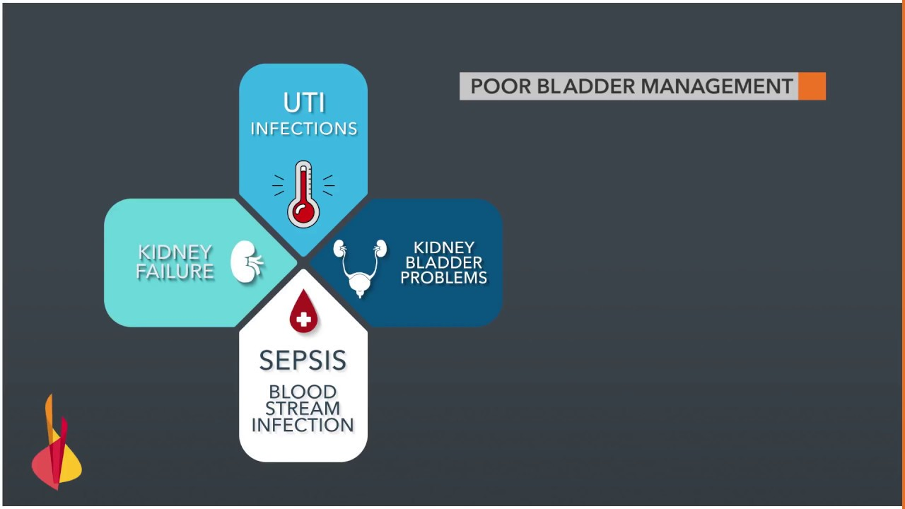 Bladder management - Reeve Foundation