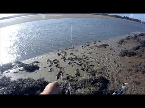 Flounder Fishing Taw/torridge Estuary Near Barnstaple Devon