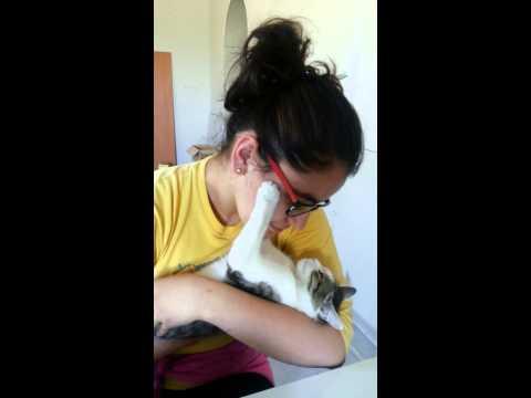 Говорящий кот Рыжик в ванной! Чистим зубы вместе со мной!