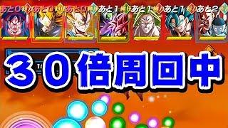 【ドッカンバトル】今回はこれで上位を狙うぜ!第24回 天下一武道会【Dragon Ball Z Dokkan Battle】