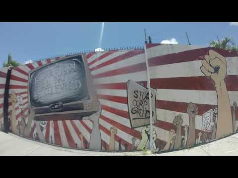 Wynwood walls , street art photographye📷