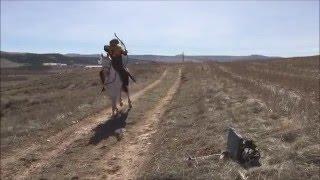 Atlı Okçuluk At Üstünde Kılıç Sallama.