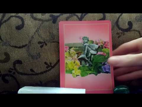 Daily Oracle Card Reading 19th January 2018 by Fairy Willow using Flower Therapy tarot