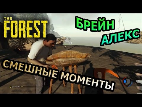 TheBrainDit - YouTube
