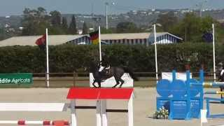 Talks Cheap, 7y old mare by Inspector X Colin Diamond in Vilamoura , 4.week GrandFinal